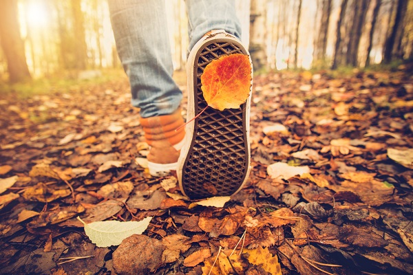 英語 Fall Autumn 違い