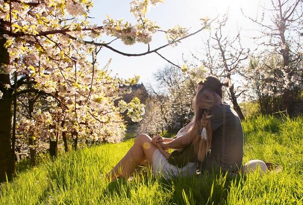 英語 春 お花見 花粉症